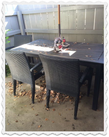 messy patio in april 2016