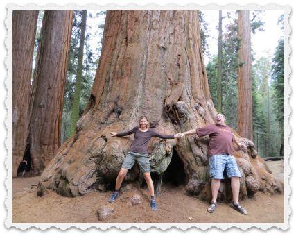gabi-craig-tree-huggers