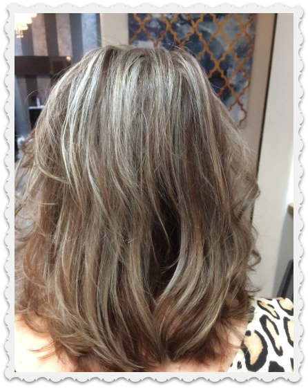 more-silvery-hair-framed